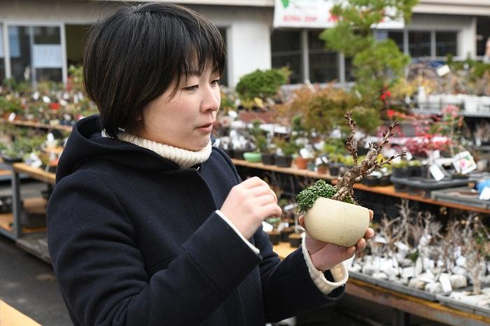 独り立ちしてからは、大きく分けて「売る仕事」と「教える仕事」をはじめました。  「売る仕事」というのは、盆栽展や盆栽祭りなどのイベントで盆栽や鉢、資材などを売る仕事ですね。真夏を除き、ほぼ月に1回はどこかのイベントで盆栽の販売を行っています。  独立直後は売れる盆栽のストックもなければ資金もありません。修業をした園の盆栽をイベントで委託販売で売らせてもらったりしていました。そうやって資金をつくって少しずつ自分で盆栽や鉢、資材を仕入れて売れるようになりました。  「教える仕事」は盆栽教室ですね。独立してすぐに教室を開き、週に1回のペースで、首都圏の数カ所で教室をおこなっています。