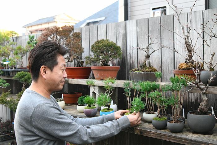 盆栽は日本のものですし、普通は日本国内で学ぶことが多いと思います。私の場合は、巡り合わせで海外で盆栽を学んだこともあり、盆栽の世界だけでなく、園芸やグリーン関係の世界を日本の外から眺めているようなところがあり、そういう視点から何か面白いことができないかなと、帰国してからは思っていました。  90年代の中頃は、何か新しいことを始めたいと思っている若手クリエイターと出会う機会が多く、茶道、華道、建築、デザインなど様々な領域のクリエイターたちとコラボレーションするチャンスもたくさんありました。そうしたコラボレーションの中に、和の樹木や苔をあしらったりということをやっていて、そうした中で今でもポピュラーな苔玉というものが生まれたりということもありました。これはあくまで、その頃仕事をしていたベンチャー企業での仕事だったんですが、段々と自分も独立して何かつくってみたいなと思うようになりました。私も盆栽だけでなく、造園や植栽などのグリーン関係の仕事をずっとしてきていたので、なにかやるとすればその方向かなというのはやっぱりありましたね。  それで、辺りを見回してみると盆栽と庭木の間が空いているんじゃないか?と思ったんです。庭の樹木は楽しみ方や管理の仕方がいろいろと出そろっているし、盆栽は盆栽で独自の世界観もあるし技術も確立しています。盆栽には小品盆栽という小さなものもありますが、世の中には小品盆栽以前の、盆栽用の素材として使われる苗木もあるわけです。盆栽ほどカッチリと作り込むわけでもなく、だからといって庭の樹木のように、邪魔にならないサイズに剪定しておけばよいというのでもなく、もうちょっと手をかけて好みの姿に仕立てていくような、カジュアルな楽しみ方。品よく、センスよくできていながら、かしこまって伝統的なスタイルになりすぎないようなものが、ちょうど無かったんです。その空いたところを埋めるようなものを作る仕事を始めたくて、「品品」を立ち上げたんです。  なので、品品で作る盆栽は王道を行く盆栽からははずれているけれど、ただの樹木の鉢植えではなく、ちゃんと盆栽の技術を用いて作っています。
