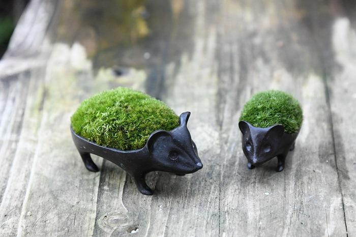 ハリネズミ型の鉢に苔を貼り込んだ、品品名物の苔の盆栽。