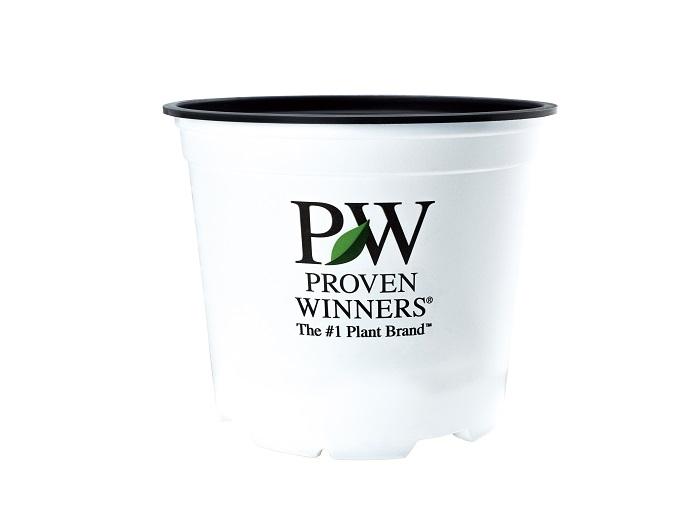 「PW」のマークが目印!