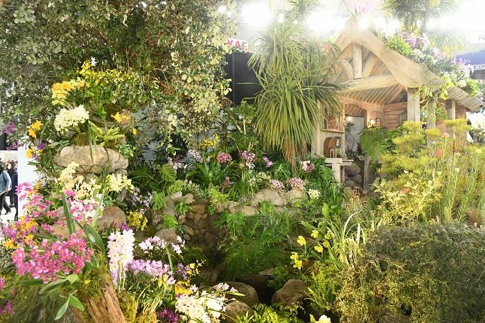 奥にあずま屋が建てられた庭で、ランをガーデンの草花としてランを使ったディスプレイ。東屋の屋根にはデンドロビウムが植えられています。  いわゆる「洋ラン」だと、高い温度が必要な熱帯性のものが多くありますが、もともと日本に自生していたシンビジウムやデンドロビウム、エビネなどには寒さに強いものもあり、実際にそうした種類を庭の草花として生かしている例もあります。日当たりや風の抜け方などの条件にもよりますが、関東地方より西の平野部であればランを生かした庭をつくるのは、それほど突飛なアイデアではないかもしれない。そんなことにも気づかせてくれるディスプレイです。