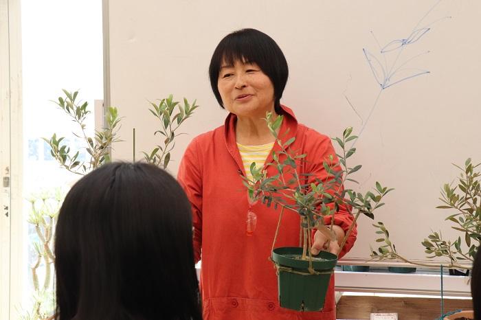 先生が持っている2鉢のオリーブは、私が2017年のオリーブセミナーで樹形づくりを習ったオリーブ「ネバディロ・ブランコ」と、2018年のオリーブセミナー後に購入した2本目のオリーブ「アルベキーナ」です。
