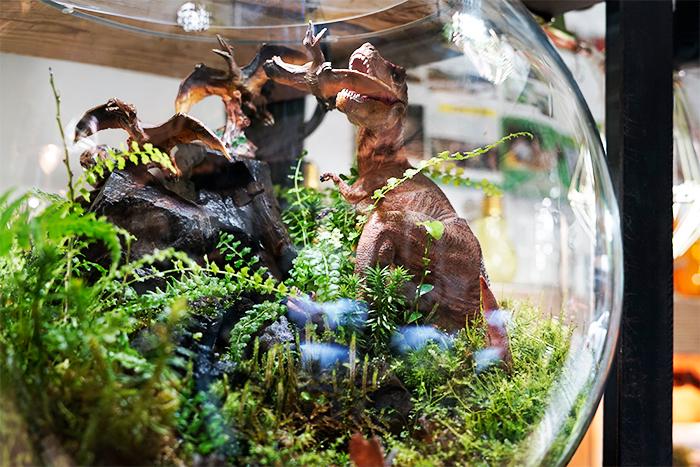 店内には今田さんが制作した作品の展示もあります。恐竜のテラリウムは迫力満点!