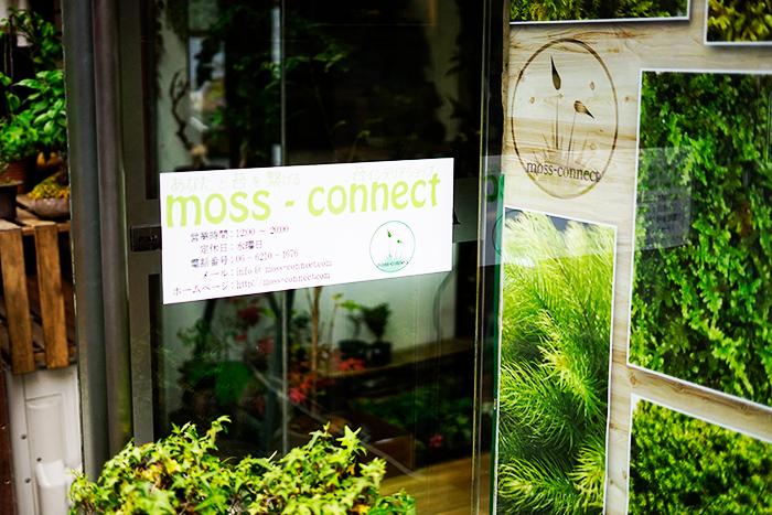 大阪、南船場にある苔の専門店がmoss-connect(モスコネクト)さんです。