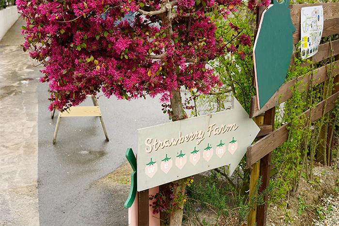 the Farm UNIVERSAL OSAKAの花苗売り場の右手にいちご園の看板があります。この矢印の方向に向かいます。