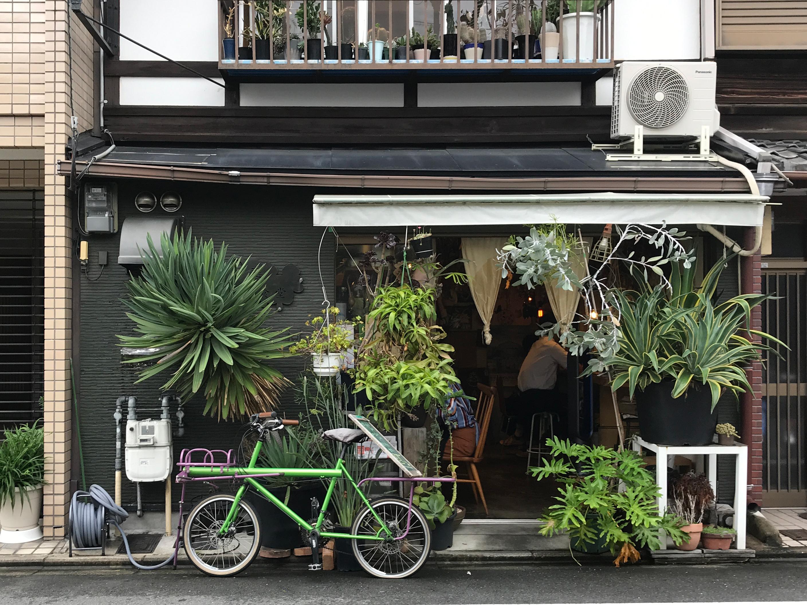 入り口からして植物好きにはたまらない佇まい。