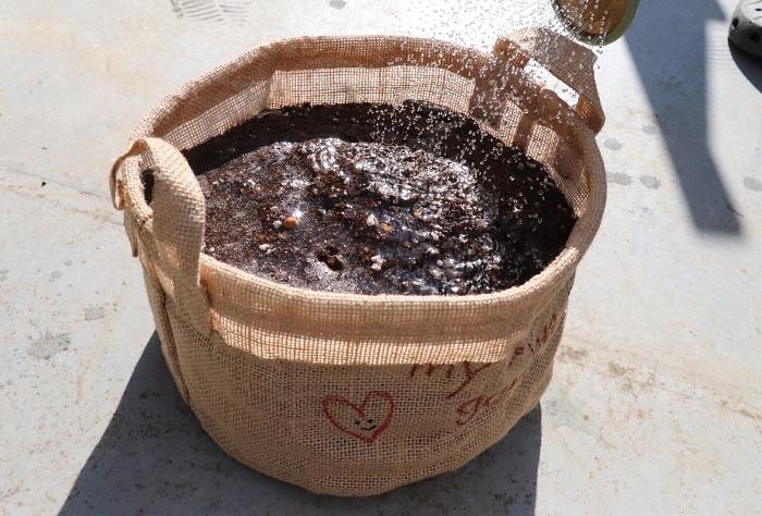 種まきをしたら、もう一度水やりをします。
