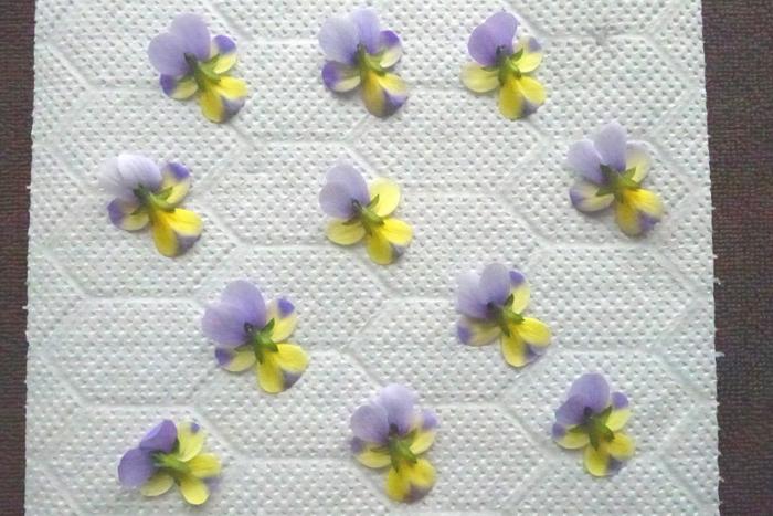 押し花で作るボタニカルキャンドルですから、最初に押し花を作りましょう。今回はアイロンを使って時間短縮をしました。作り方はとっても簡単です。  最初にタオルを広げます。次に新聞紙や上質紙、クラフトペーパーなどの上にキッチンペーパーやティッシュを敷きます。その上に押し花にしたい花を並べます。  この時、花と花ががくっつかないように間隔をしっかり取りましょう。  並べた花の上からキッチンペーパーあるいはティッシュを被せます。さらに花色が滲んでこないように、上にもう一枚紙を重ねます。さらにタオルを被せます。