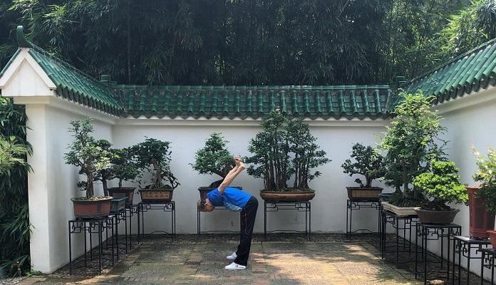 たくさんの盆栽がある場所で体操をする人。