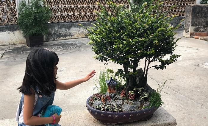 盆栽と小さな陶器の置物で世界観を作っていた鉢。