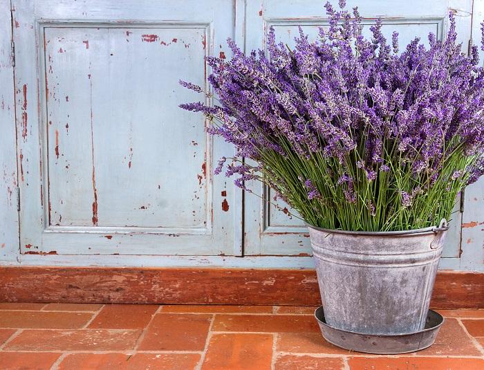 ラベンダーの花の時期の5月~7月にお花屋さんにラベンダーが出回ります。ラベンダーだけの花束の他、他のハーブと組み合わせたハーブのブーケも人気です。その他、ラベンダーを入れたアレンジメントもおすすめ。