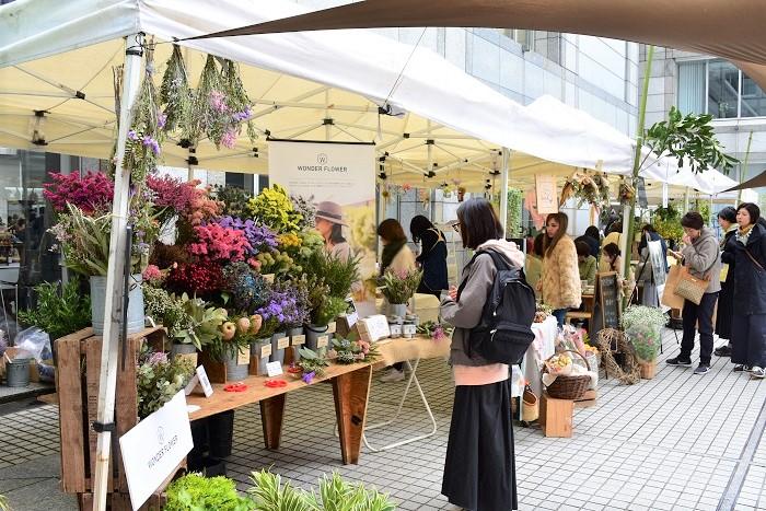 Flower & Green Marketには、青山国連大学の中庭に約30の出店者が持ち寄る2000品種以上の植物が集まるので、立ち寄るだけでも心が癒されます。