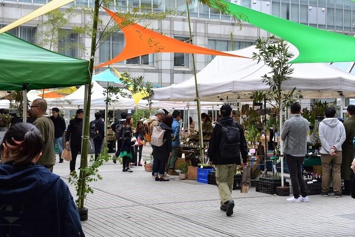 Flower & Green Marketは、青山国連大学前広場で毎週開催されている「青山ファーマーズマーケット」を舞台として展開するイベントです。