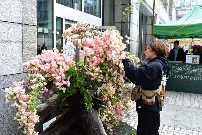 『Craft Gin Bar Lounge』が開催されるラウンジの入口では、密林東京さんが巨大な古木に花を装飾しているダイナミックなパフォーマンスを見ることができました。この古木は入り口の孟宗竹と同じく内田植木さんが仕事場から運び込んだもの。古木をベースにツツジ、クレマチスなど、春から初夏の花を大胆にあしらっていく密林東京さん。