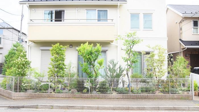 お庭が南側にあって、さらに立地は角地。お庭に面したリビングには大きな窓もあって日当たりは良好。横浜市のA邸はそんな素敵なお宅です。それなのに、通りを歩く人の視線が気になって、カーテンも開けられないなんて!せっかくの明るいリビングが台無しです。  角地なので通りからお庭が見えてしまって雑然としているのも恥ずかしいし、フェンスで覆ってしまっては暗くなるし圧迫感も出てしまう…とお悩みは尽きません。  今回のお庭のテーマはイングリッシュガーデン。それでは、通りからの目隠しもナチュラルな植栽で解決してしまいましょう!