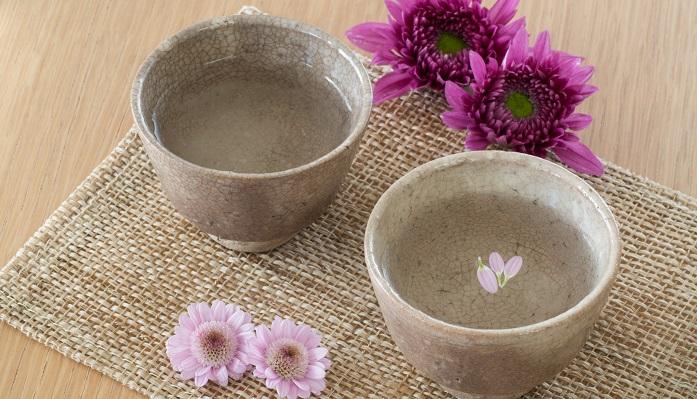 中国で菊は「翁草(おきなくさ)」「千代見草(ちよみくさ)」「齢草(よわいくさ)」と言われ、花を用いることで邪気を祓い長生きする効能があると信じられていました。日本でも平安時代から取り入れられ、中国から伝来したばかりの菊を飾ったり、菊の香りを付けた「菊酒」を飲んだり、「着せ綿」といって菊の夜露や香りをしみこませた綿で重陽の節句当日に体を拭き清め、邪気を払っていました。江戸時代には五節句として定められ、諸大名が江戸城に集まって菊酒を飲み、栗飯を食べて菊花を観賞していました。現在日本で「オキナグサ」と呼ばれているものはキンポウゲ科オキナグサ属の多年草です。