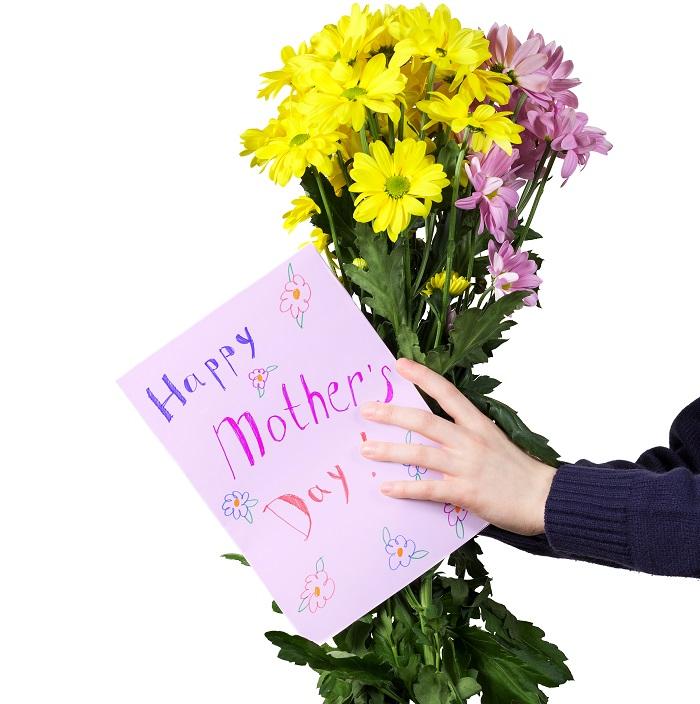 また、オーストラリアでは母の日に菊を贈ります。
