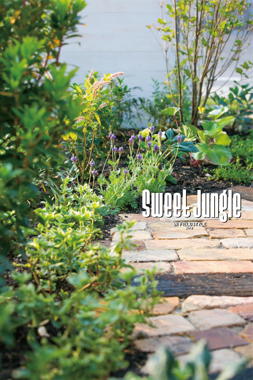 は愛知県を中心に庭や外構エクステリアの設計・施工・管理するshinwaenさん。 sweet jungleでは植物や ガーデングッズ、Tシャツ等を販売します。庭の相談など どしどし受け付けます!