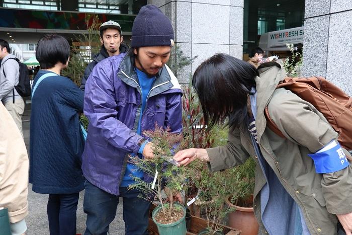 川崎市で庭園樹や公共緑化樹木の生産卸、販売をされている内田植木さん。「メラレウカなどのオーストラリアの植物がこよなく好きなんです。」と内田さん。先代から引き継いだ時にオーストラリアンプランツの生産を本格的に始められたそうです。編集部メンバーもメラレウカの奥深い話に興味津々、引き込まれていました。