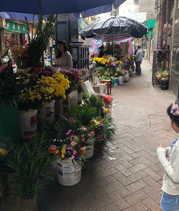 マカオの気候は温帯夏雨気候で、日本と同様四季がありますが、その長さが少し違います。  3~4月 春(平均気温20.3度)  5~9月 夏(平均気温27.75度)  10~11月 秋(平均気温26.15度)  12~2月 冬(平均気温15度)  大体これぐらいの温度で、日本の四季と比べるとかなり暖かいのですが、今回訪れた4月の初めに咲いていた花は、
