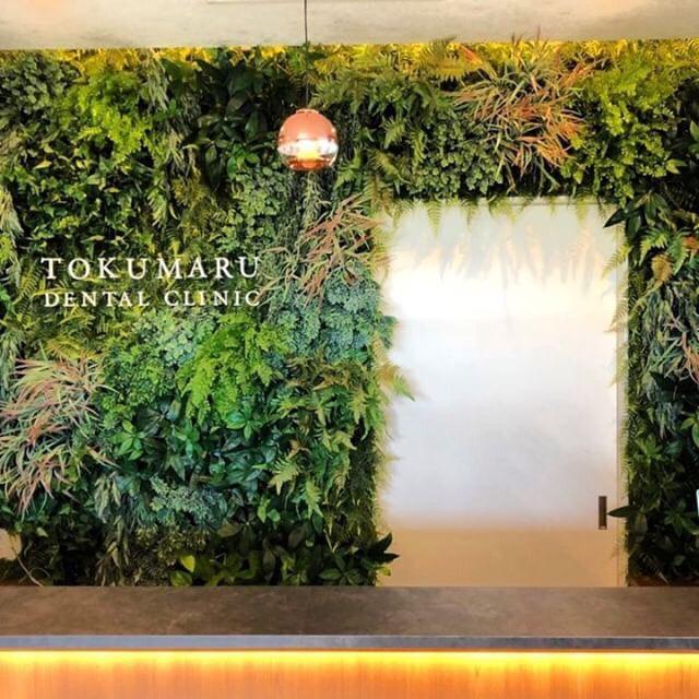 地球に緑を!という願いを込めて、あらゆる壁を緑化するGreen Spaceさん。 sweet jungleでは苔フレームや、造花の小物などの販売もされるそう!?