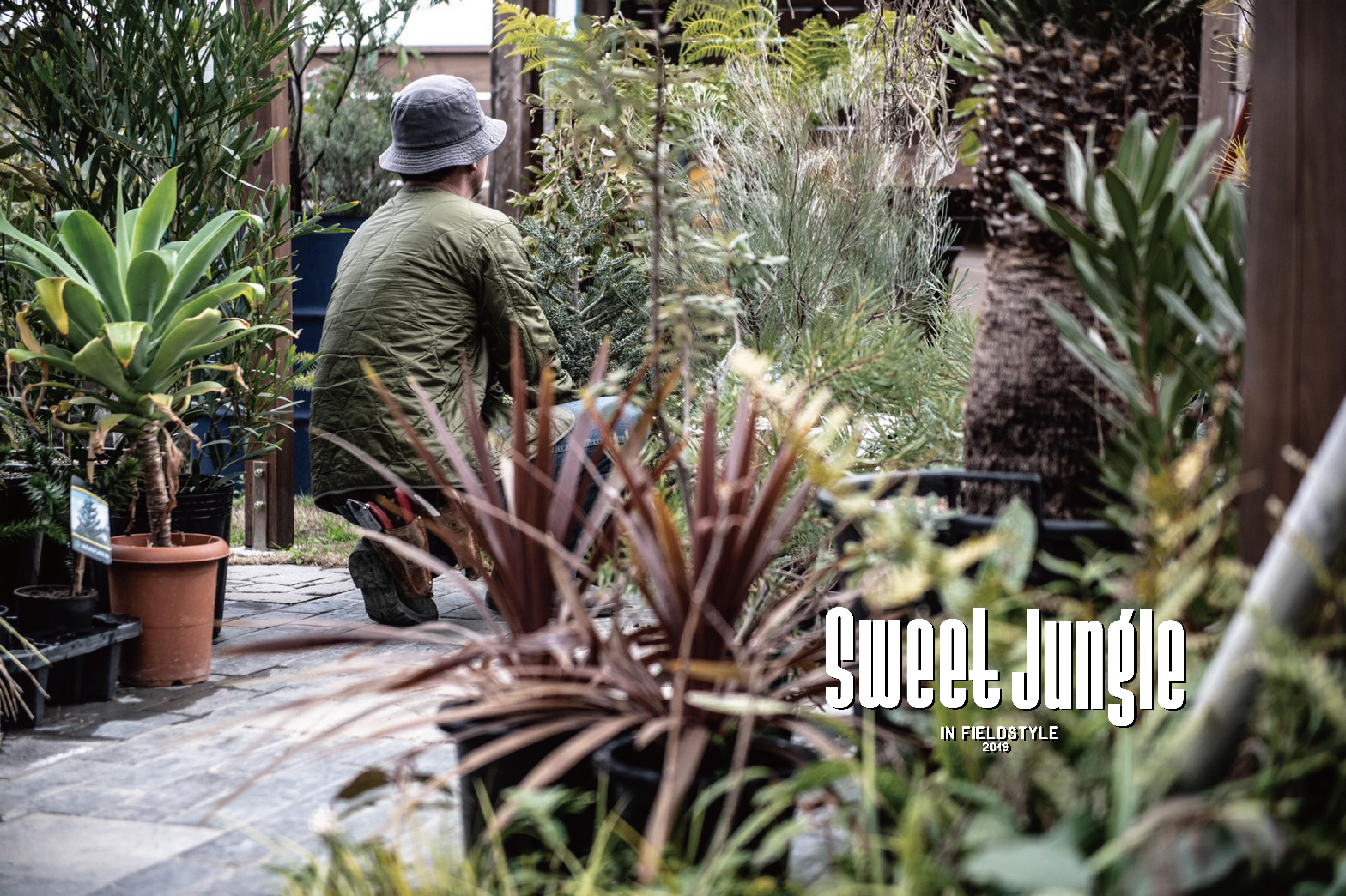 今回新たに新設されるのが、「sweet jungle」という植物に特化したエリア。  「植物を育てることを楽しむ時間」を暮らしに取り入れたいけれど、植物を育てる自信がなかったり、自分の性格やライフスタイルにあった育てやすい植物が分からなかったり……。そんな疑問を、出店者に気軽に相談しながら植物を購入することができるエリアです。  出店者の中には生産者さんもいるので、普通のショップではなかなか聞けない生産者さんならではの植物のお話も聞けそす。ぜひ正しい育て方と一緒に「植物を育てることを楽しむ時間」をGETしましょう!