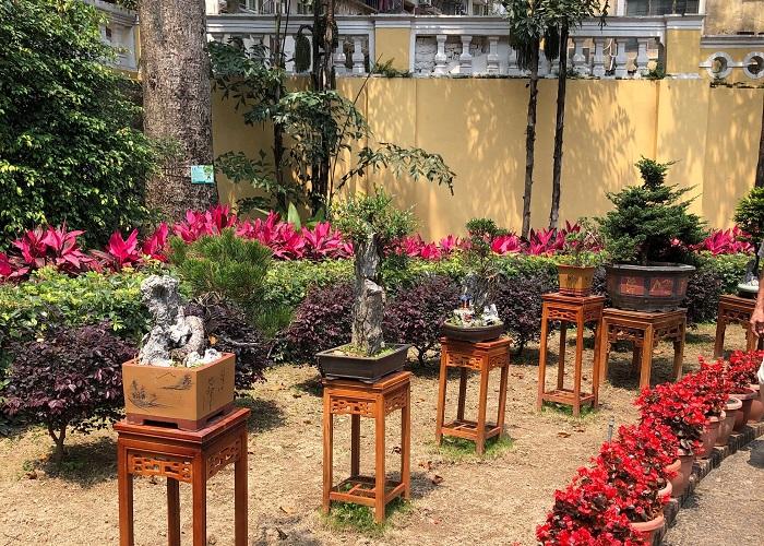 盆栽が鉢と飾り台に据えられてたくさん陳列されていました。台の下を見ると草の色が全く違うので、かなり長いこと置いてあるようです。
