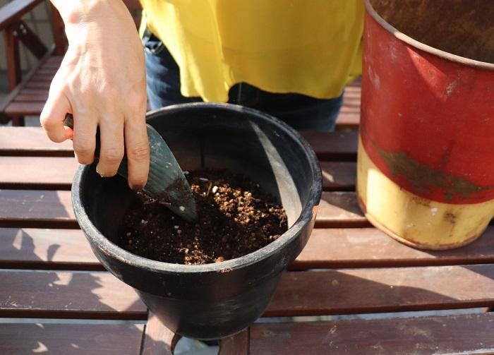 鉢底石の上から、草花用の培養土を入れます。