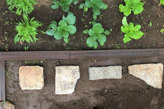 雨が降ると土がぬかるんで不自由だったとのことで、菜園スペース前に踏み石を並べました。形も様々な石をランダム並べることで、ナチュラルな雰囲気になりました。
