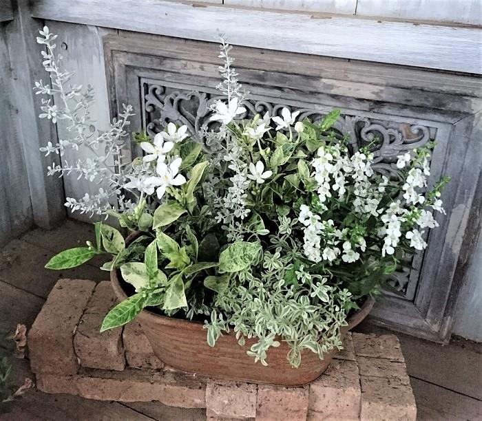 ポイントは、植物(花とリーフ)の色合わせです。淡い色合いが好みで、あまりたくさんの色数は使わずに作ることが多いです。花が主役の寄せ植えなら、花を引き立てる葉もののちりばめ方などを意識して作っています。  お客さんからは、「可愛い雰囲気で作って欲しい♡」というご注文が多いです(笑)。