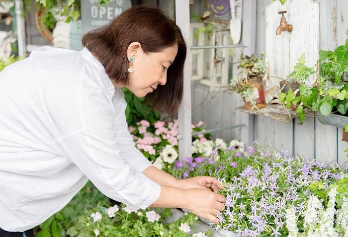 子育てを始めた頃、小さなベランダで種を蒔いたり植物を育て始めたのがガーデニングへの入口でした。その後、アパートの小さな庭でガーデニングにはまり、もっと深く知りたい。学びたい。これを仕事にしたい。と思うようになったんです。当時はインターネットなど無かったので、とにかく本で調べたり、習いに行ったりして植物について学びました。そして、園芸店のスタッフになり、年に200~300個の寄せ植えを作る機会をもらったことで、季節ごとに流通している花の性質を深く知り、寄せ植えの技術を身に着けることができました。個人で「はな*いとし*こいし」をオープンしたのは、10年くらい前からです。
