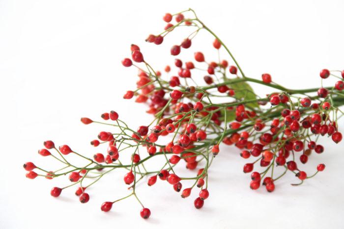 ローズヒップと言われるバラの実、切り花としてもいくつか種類が流通しています。大きめの実を垂らす鈴バラや、小さな実がたくさんついている野バラの実があります。実の色は赤~オレンジの色味でブーケの中に秋の雰囲気を出してくれます。小ぶりな実をつける野バラの実は枝を見せるように入れてあげるとワイルドな印象になり、リネンなどの布のリボンで結んであげればボーホーシックなスタイルを作り出せます。可愛い赤い実で自然の雰囲気をうまく取り入れてみるのもオシャレですね。