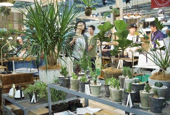 植物、インテリア、照明を得意とする3社のコラボブースには、緑豊かな心地よい暮らしの景色が展開され、多くの人が引き付けられて集まっていました。  「oLAND」は、アウトドアリビングの空間、売場、展示会プロデュース、アウトドアリビングに特化したエクステリア・インテリア関連商品の卸売を行っています。代表取締役の永谷さんにお話を聞きました。「oLAND」は植物を使った空間づくりを得意としているので、今回は植物を吊るすなど様々な植物の飾り方の工夫を凝らして3社のコラボブースを癒しの空間に演出したそうです。