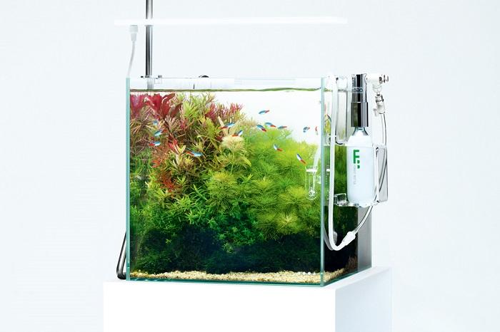 DOOAシステムアクア30は、ろ過機能を備えた小型水槽でビギナーの方にもおすすめ!幅30×奥行30×高さ30(cm)の水槽サイズで、ご自宅の小さいスペースでもネイチャーアクアリウムを楽しむことができます。