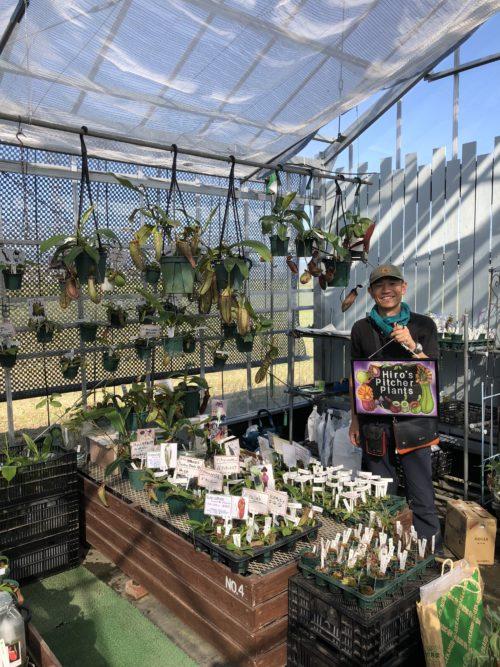 画像提供:ON THE PLANTS  ネペンテスを中心とした食虫植物を扱うhiro's pitcher plantsさん、山梨からの出店です。ネペンテスとはウツボカズラのことで、捕虫袋が大きく長いものや、模様のついたものなどなかなかお目にかかれない様々なネペンテスのラインナップでした。