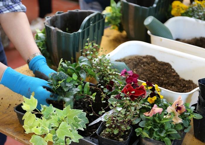 はい。お店として毎月園芸教室を開催しており、社長が季節の花や害虫、病気などの話をした後に毎回のテーマにそってみんなで寄せ植えを作る感じです。寄せ植えを作る時間になると生徒さんの周りにスタッフが付くのですが、私はその一人としております。