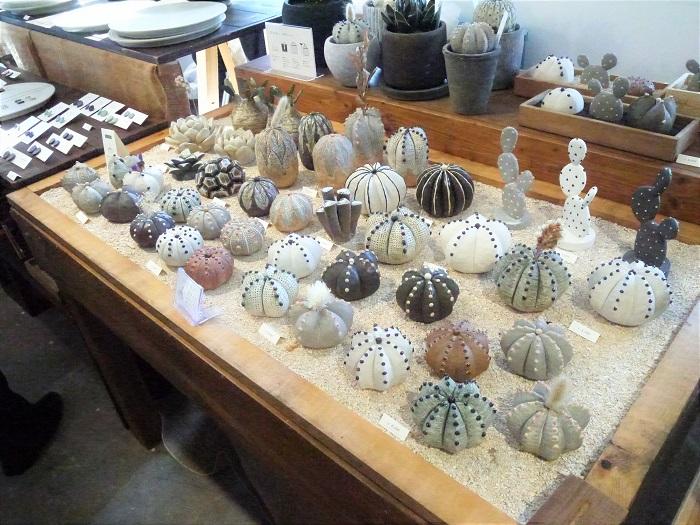 植物をモチーフに陶器で作った花器や食器、アクセサリーが揃うSTUDIO.ZOKさん。