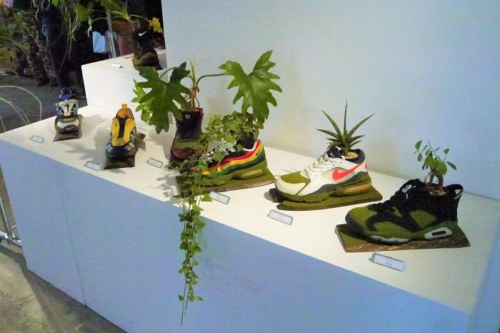 スニーカーから植物!とびっくりしないでください。SHOETREEさんの作品です。履かなくなったスニーカーから植物が生えているのもいいじゃないですか。ユーモアたっぷりのリサイクルですね。