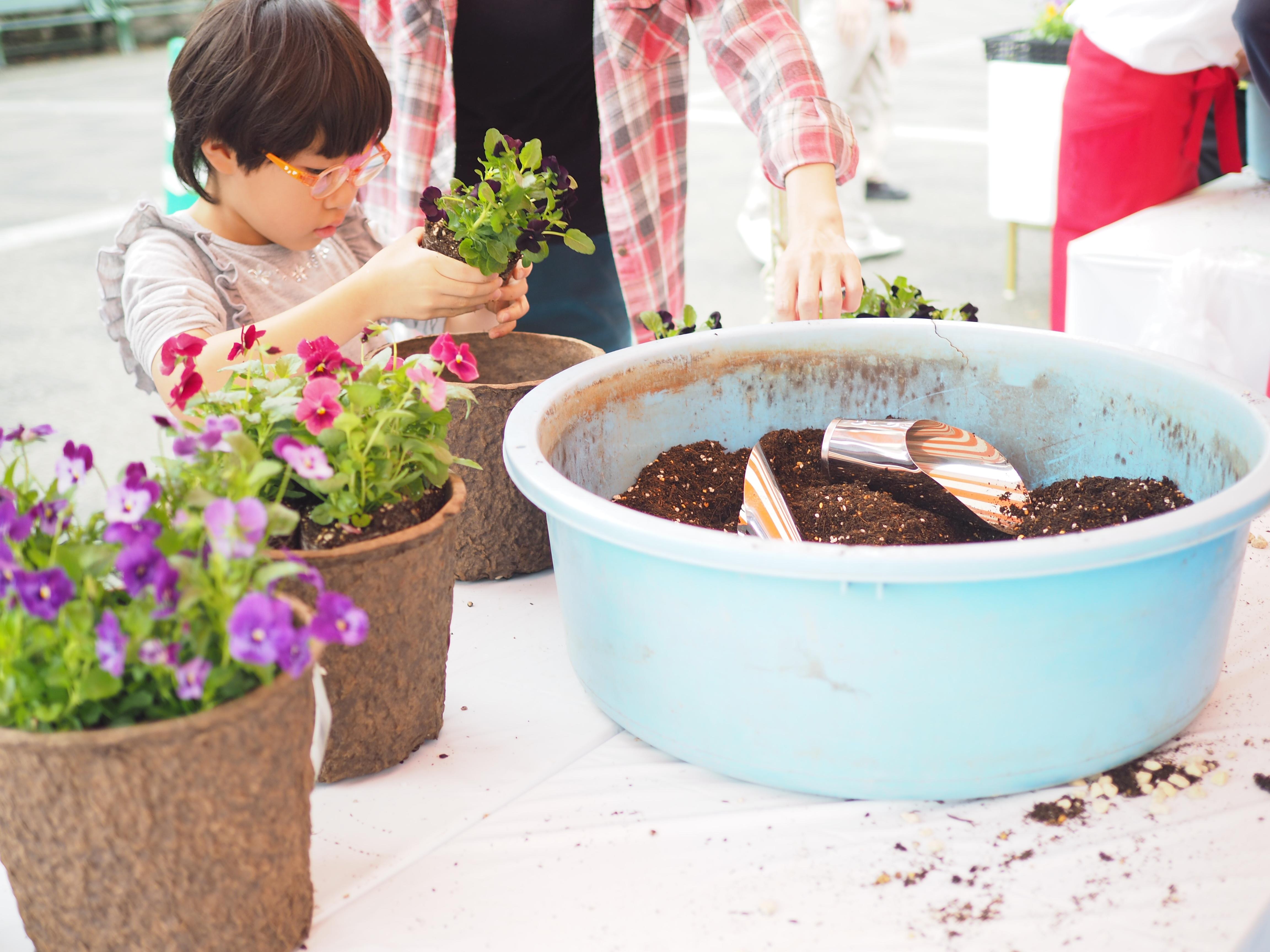 メインイベントは、来場者500人規模の寄せ植えでつくる巨大ハロウィン花壇。まずは、ハロウィン花壇のパーツとなるビオラの寄せ植えを来場者の皆さんに作っていただきます。気軽に無料参加できるとあって、小さなお子さんを連れたご家族やカップルなど、さまざまな方がチャレンジしていました。特にお子さんははじめての体験に大興奮! 講師のレクチャーを待ちきれず(?)、夢中で植え付けをする姿が微笑ましかったです。