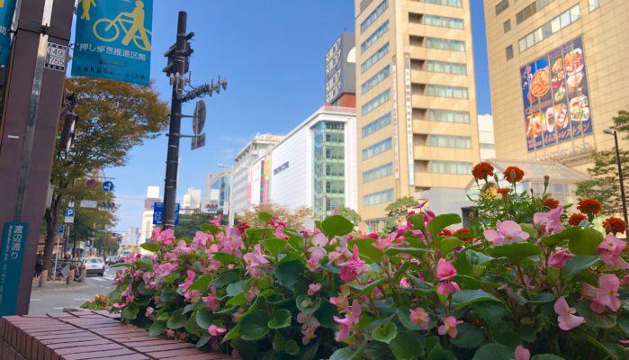 ▲天神の街中には花が咲き誇る花壇が沢山あります!  福岡市内では花と緑でまちづくりを盛り上げていこうという取り組みが行われています。福岡市の行政が主体となって取り組む、花で共創のまちづくりを目指す、一人一花運動です。一人一花運動とは、福岡市民、団体、企業、福岡市に関わるみんなが花づくりを通して、人のつながりや心を豊かにすることを目的としています。行政がこのように花や緑に特化した取り組みを行うのはとても珍しいですよね。この一人一花運動が実際にどんな取り組みを行っているのか、LOVEGREENでもご紹介していきます。