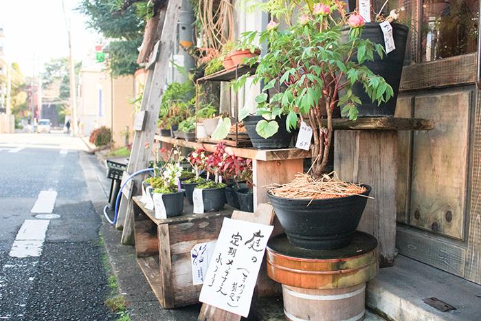 福岡 花屋 楠田商店