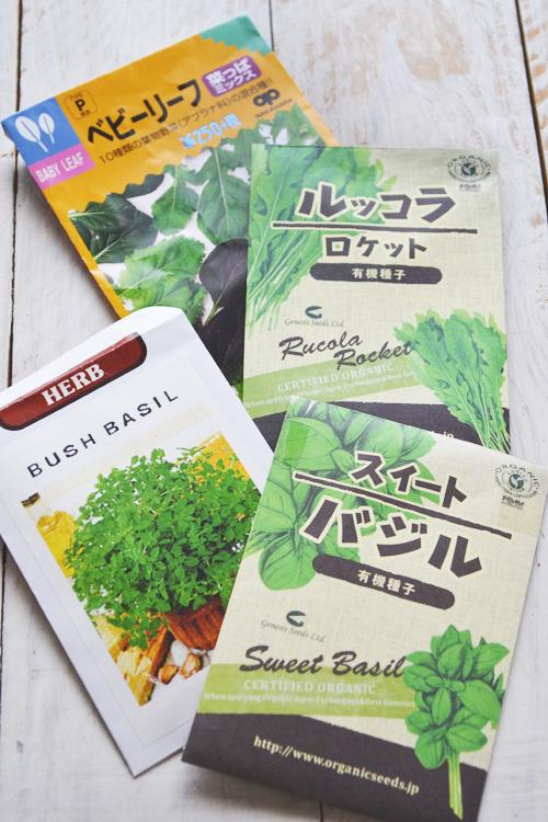 バジルは種の発芽には20℃以上の温度が必要なので、種まきは4月下旬から5月の気温が安定して遅霜の心配がない頃にまきましょう。バジルを地植えにしたい場合はポットで苗を育てた後に定植するか直播きにします。種が重ならないようにまき、バジルは光発芽性*なので覆土はせずに十分に水を与えます。日に当てて乾燥させないように管理します。本葉が2~3枚出てきたら込み合った部分を間引きします。間引きしたバジルのベビーリーフは料理に使いましょう。
