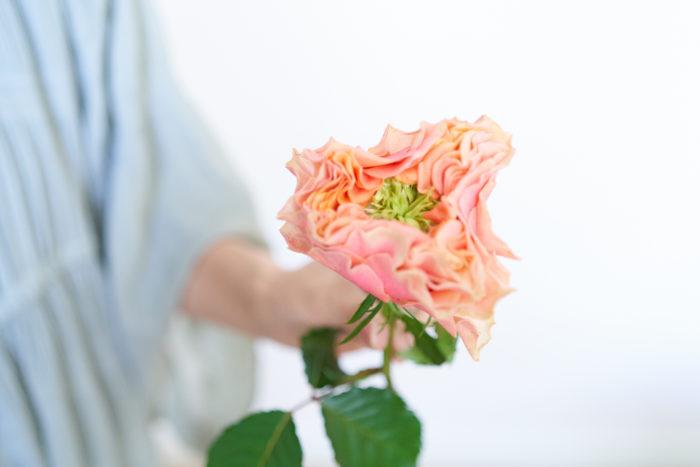 """真ん中の緑の部分は「グリーンアイ」と言います。グリーンアイがあることで自然的でかわいらしい印象に。  「柔らかいアプリコットとピンクの花びらに、花芯はグリーンアイの個性的なバラです。fossetteはフランス語で""""えくぼ""""という意味。市場でも一際存在感があって、思わず手にしてしまいました。大輪のバラなので、1輪でスッっと生けても絵になりますよ。」"""