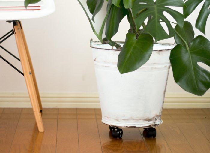 ホームセンターや家の掃除道具で見るバケツ。今回はバケツをペイントでアレンジし、鉢カバーに変身させます。塗るだけでも印象は変わりますが、ちょっとひと手間かけてヴィンテージ調の仕上げにチャレンジ。キャスターをつけることで移動しやすくなるので、日当たりに合わせての植物の移動がしやすくなります。