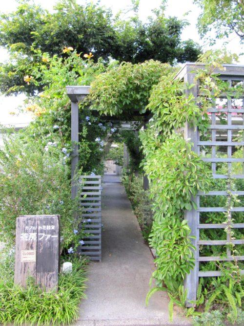 ▲7月頃のアプローチの様子 画像提供:環境デザイン MIYURI企画  初夏になると植物がぐんぐんと茂り、たくさんの花や新芽が芽吹き、多くの生き物が集まります。新緑のアーチをくぐると、「限りなく自然に近い庭」が出迎えてくれます。四季の移ろいを感じる事ができるのも庭の楽しみの醍醐味ですね。