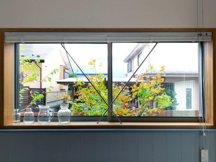 キッチンに立ち、ふと目線を窓の外にやると見えるコハウチワカエデ。「紅葉が綺麗で、季節の移り変わりを感じて癒されます」。