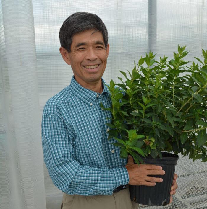多くの人気品種を生み出してきた世界的な育種家・坂崎嵜さん