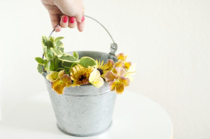 今の季節は春の草花たちが続々と花を咲かせます。お子さんと一緒に花草で遊んでみるのはいかがでしょう?春の柔らかな雰囲気を楽しみましょう。