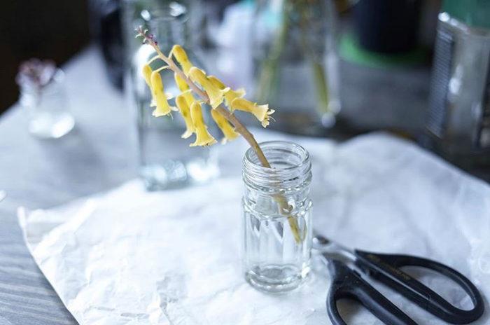 家の中には花瓶の代わりになるものが色々あります。こちらは柚子胡椒の空き瓶を花瓶にしたそう。お家でお宝探ししてみるのも面白そう!