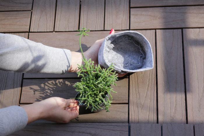 ルーツポーチ「ジョイ」は、3号ポリポットに入った植物がすっぽりと収まり、ゆとりもあるぐらいのサイズ。